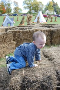 Jackson climbs the hay maze