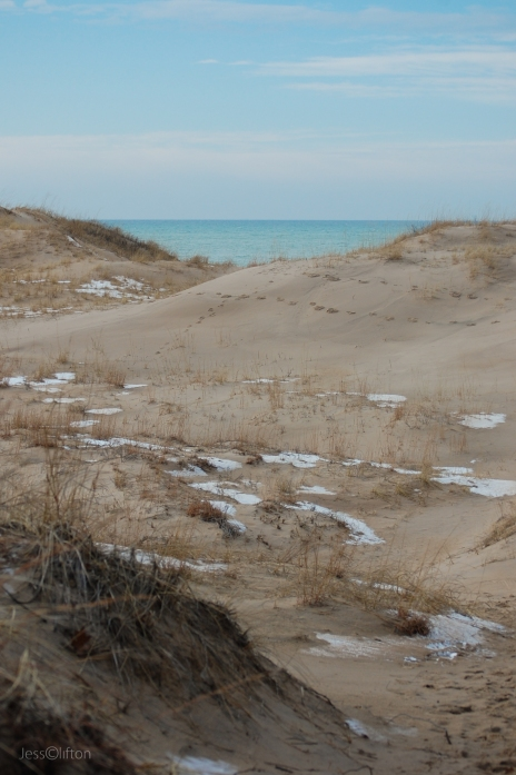 Lake Michigan Nordhouse Dunes