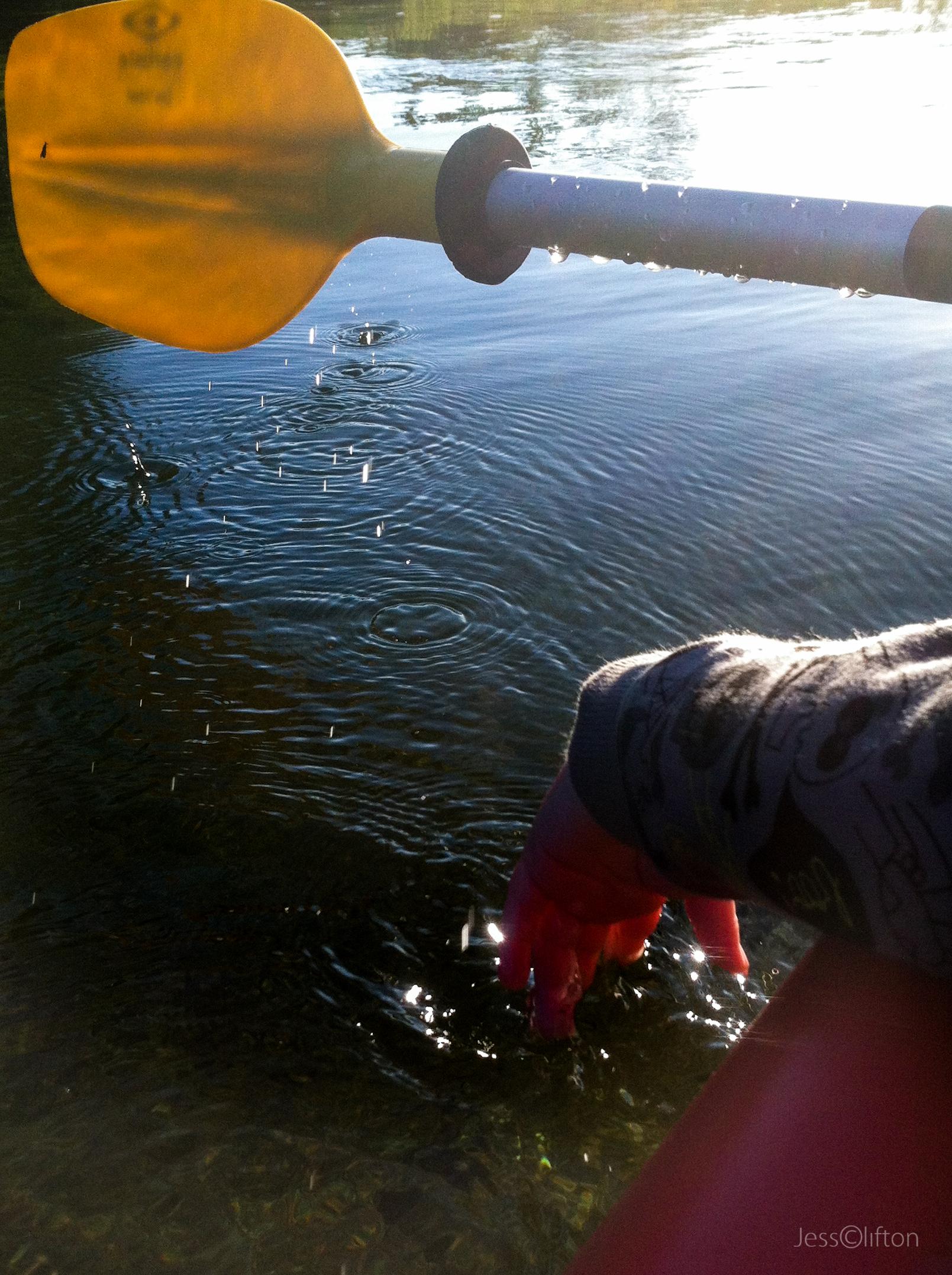 Kayaking Jackson Mi Jackson Water