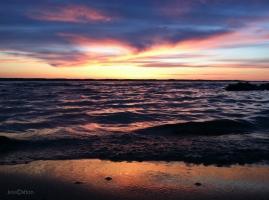 OMP Sunset Shoreline
