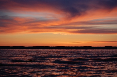 OMP Sunset Waters