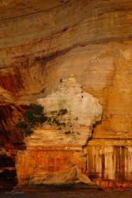 Pictured Rocks Cliffs Seagulls