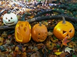 Ashton_Park_Four_Jackolanterns
