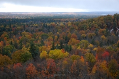 Buckley_High_ Rollaway_Overlook_Fall