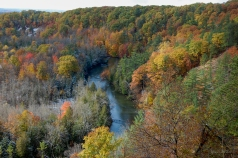 Rollaway_Overlook_Fall_Hillside
