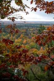 Rollaway_Overlook_Through_Trees