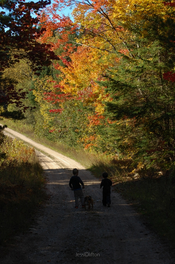 Children_Dog_Fall_Path