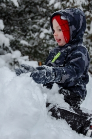 Jackson Playing in Snow