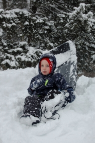 Snow Baby Sled