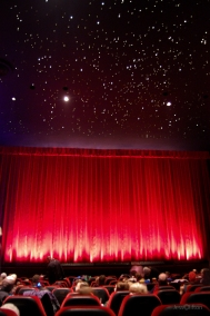 State Theatre Stars