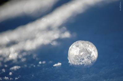 Backlit Frozen Bubble