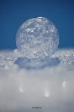 Frozen Bubble Bokeh