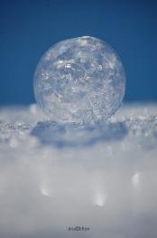 Frozen Bubble Bokeh