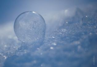Frozen Bubble Multiples