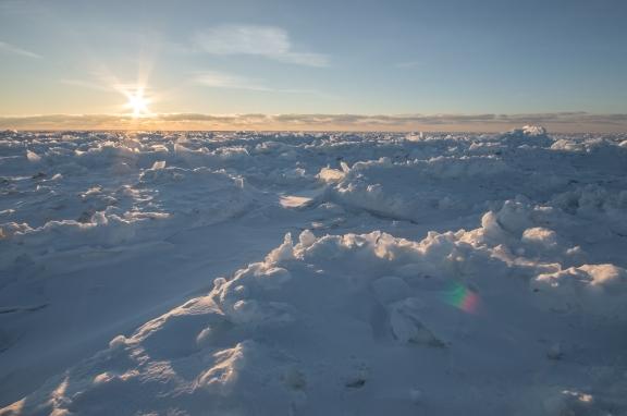 Ice Field at Sunset